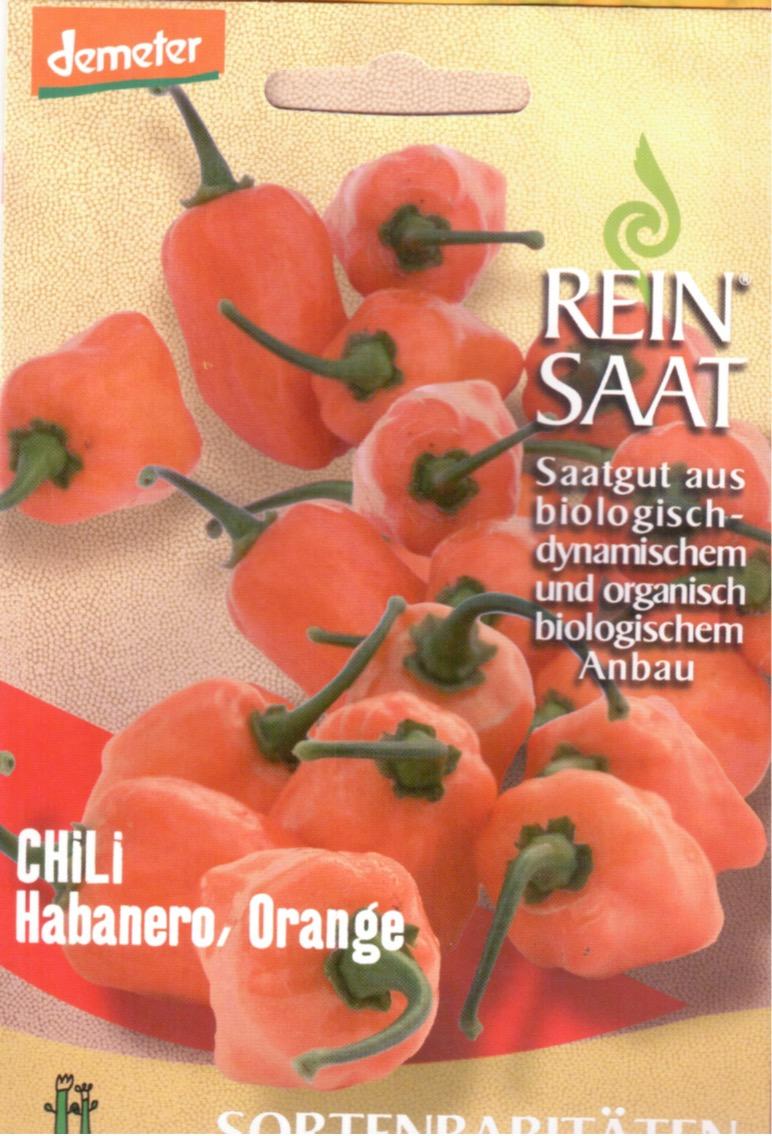 Saatgut Chili Habanero Orange -R-