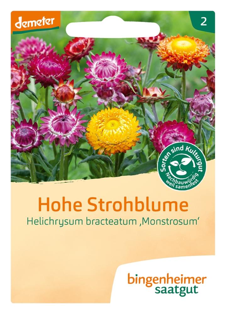 Saatgut Hohe Strohblume -B-