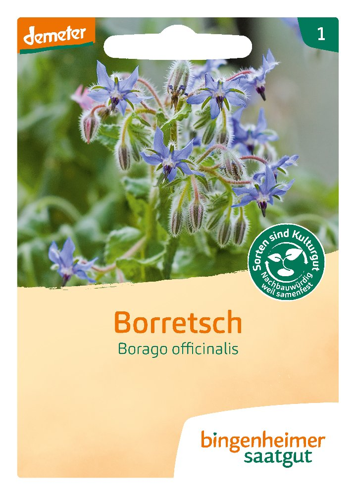 Saatgut Borretsch -B-
