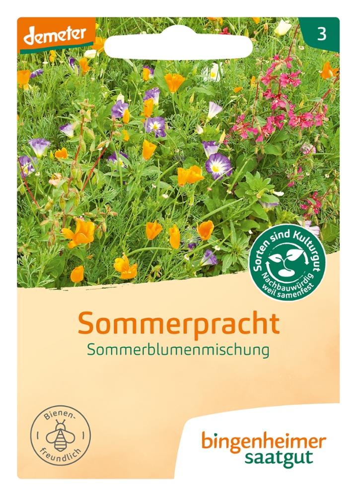 Saatgut Sommerpracht -B-