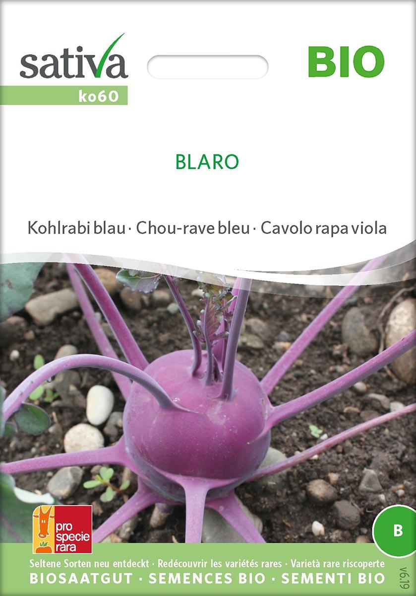 Saatgut Kohlrabi Blau Blaro -S-