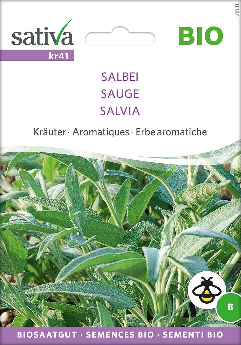 Saatgut Salbei -S-