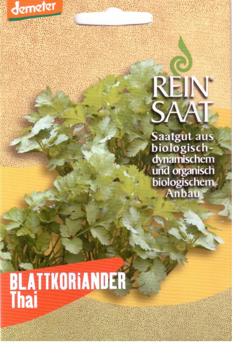 Saatgut Blattkoriander Thai -R-