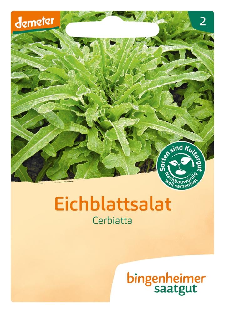 Saatgut Cerbiatta Salat -B-