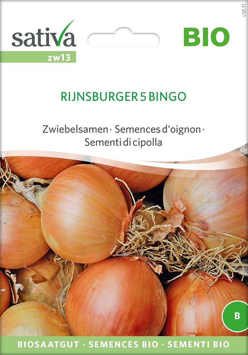 Saatgut Zwiebel Runsburger 5 Bingo -S-