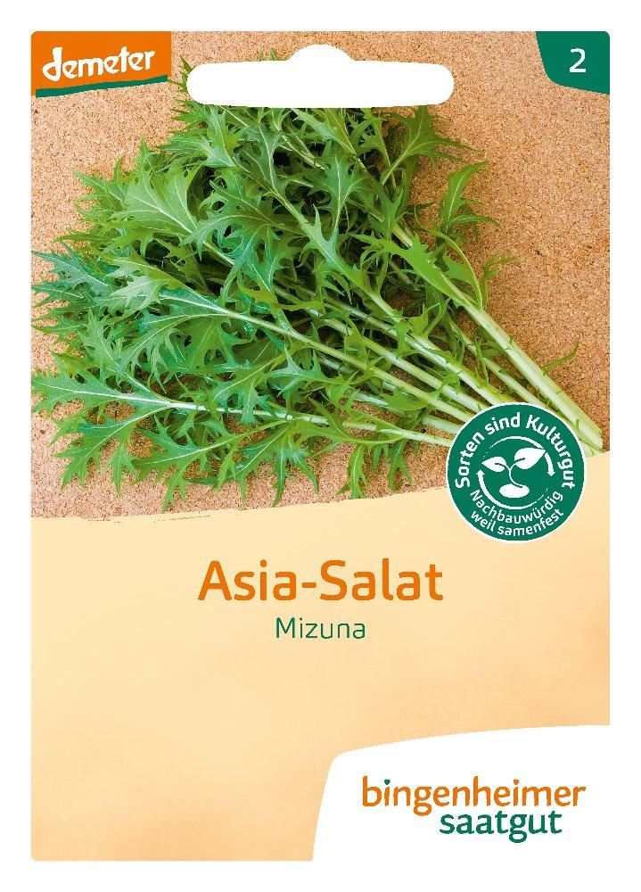 Saatgut Asia Salat Mizuna -B-