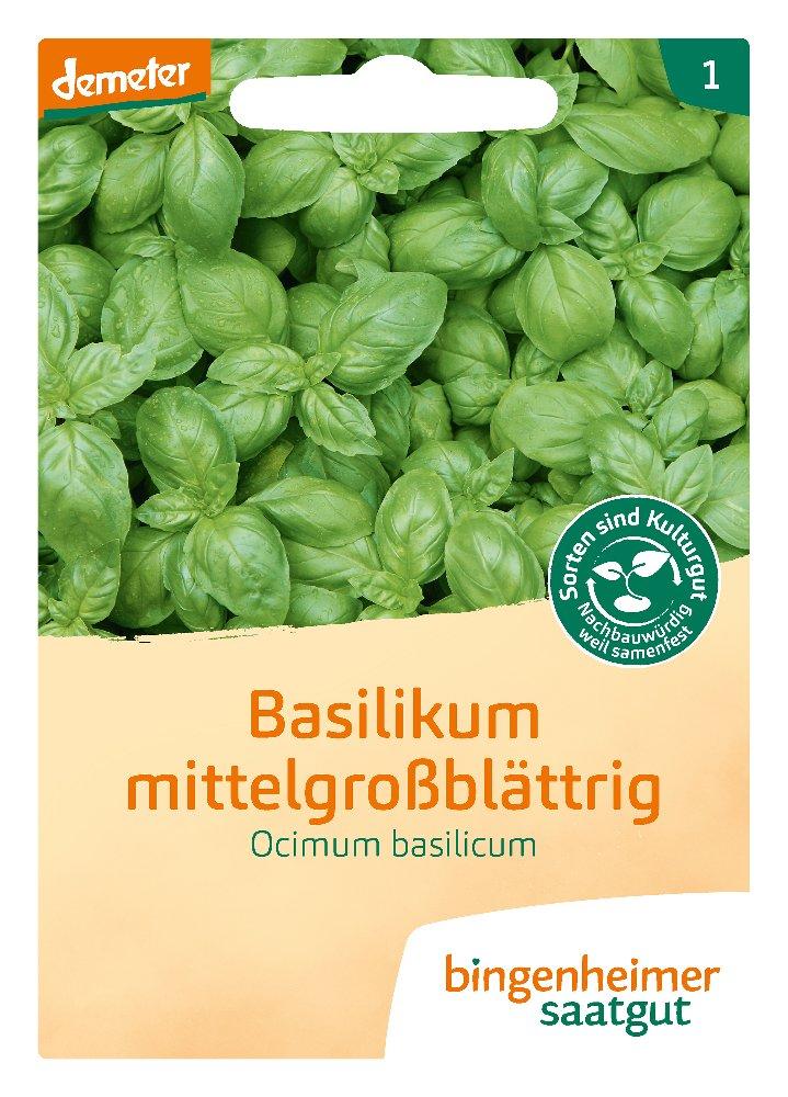Saatgut Basilikum mittelgrossblättrig -B-
