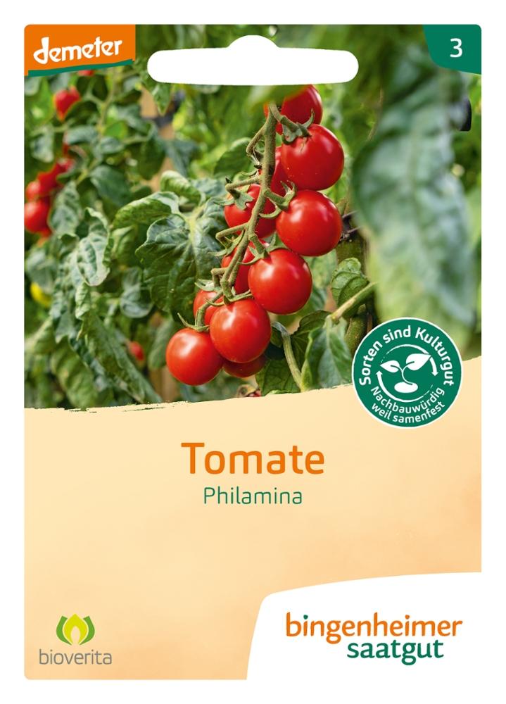 Tomatensaatgut Philamina -B-
