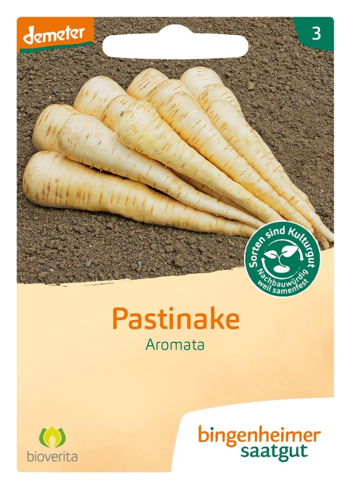 Saatgut Pastinake Aromata -B-