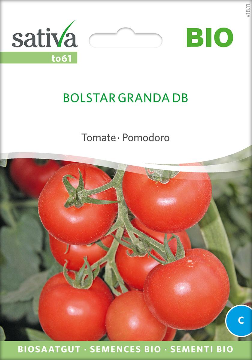 Tomatensaatgut Bolstar Granda -S-