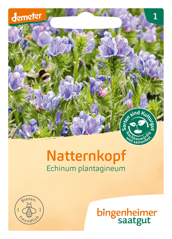 Saatgut Natternkopf -B-
