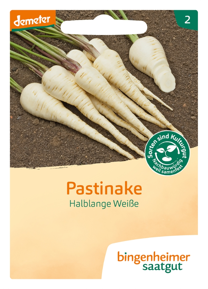 Saatgut Pastinake Halblange Weisse -B-