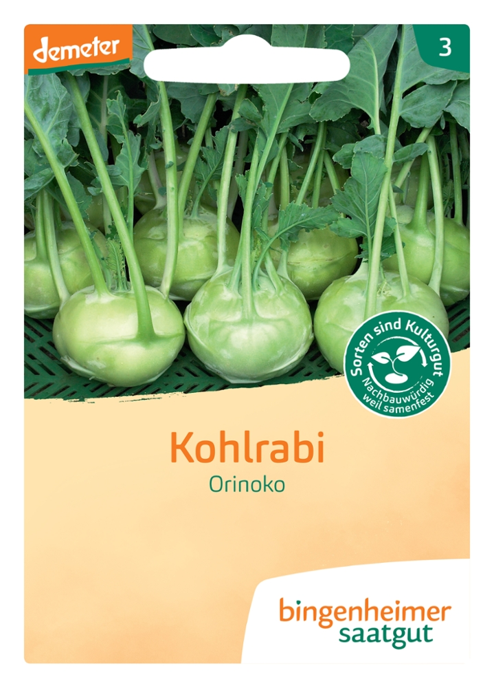 Kohlrabi Orinoko -B-