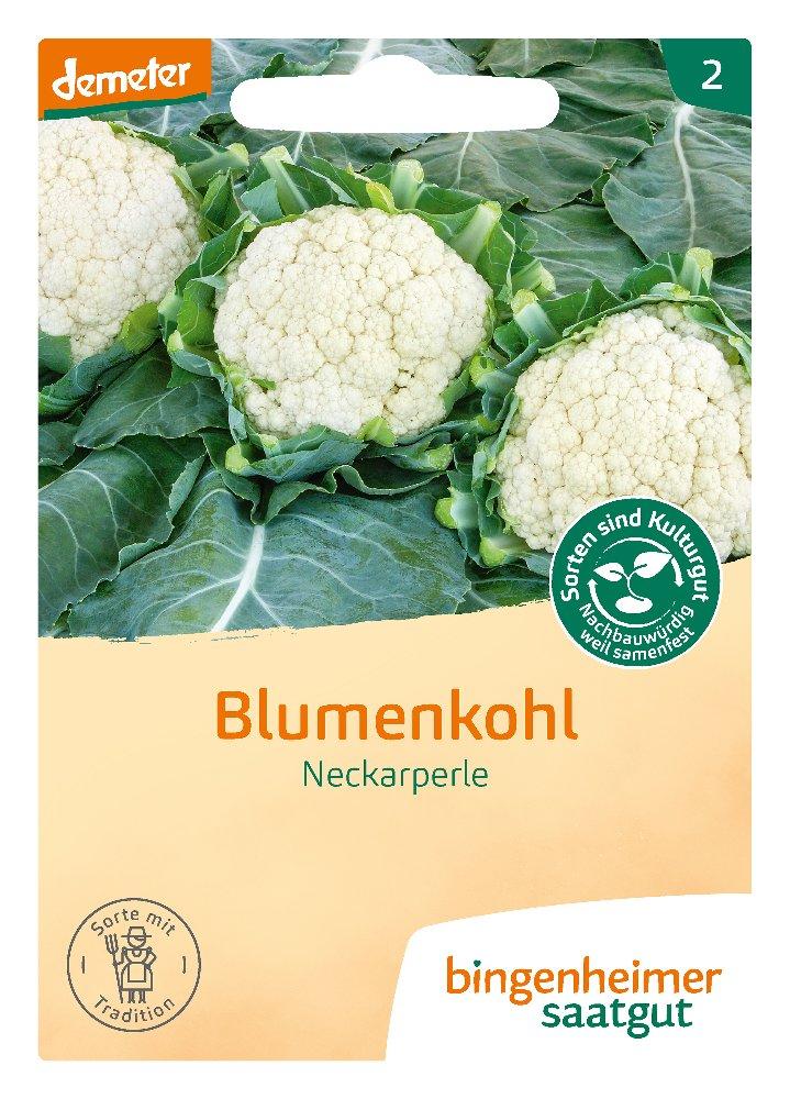 Saatgut Blumenkohl Neckarperle -B-