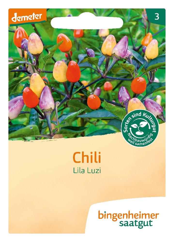 Saatgut Chili Lila Luzi -B-