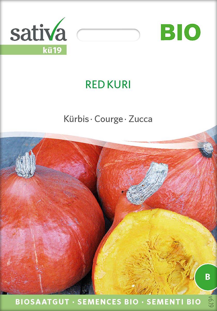 Saatgut Kürbis Red Kuri -S-