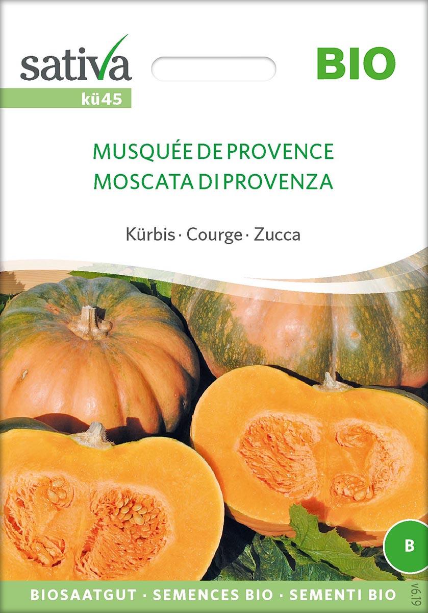 Saatgut Kürbis Muskat de Provence -S-