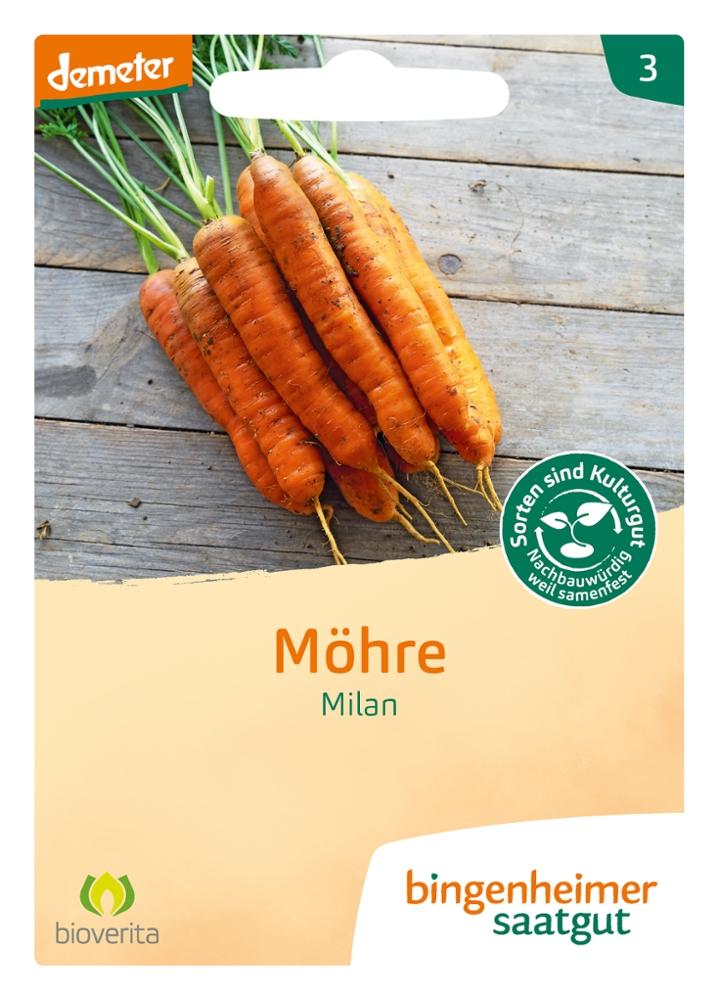 Saatgut Möhre Milan -B-