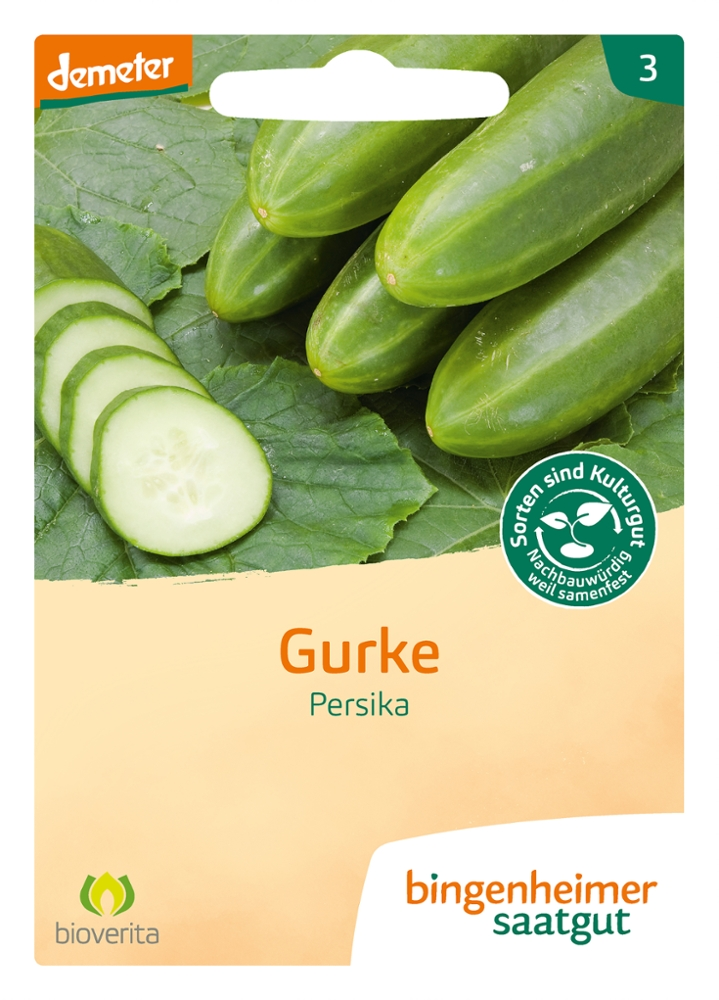 Saatgut Gurke Persika -B-