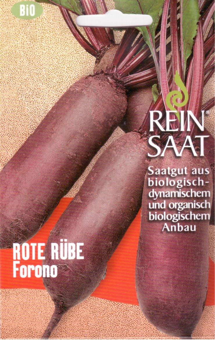 Saatgut Rote Bete lang Forono -R-