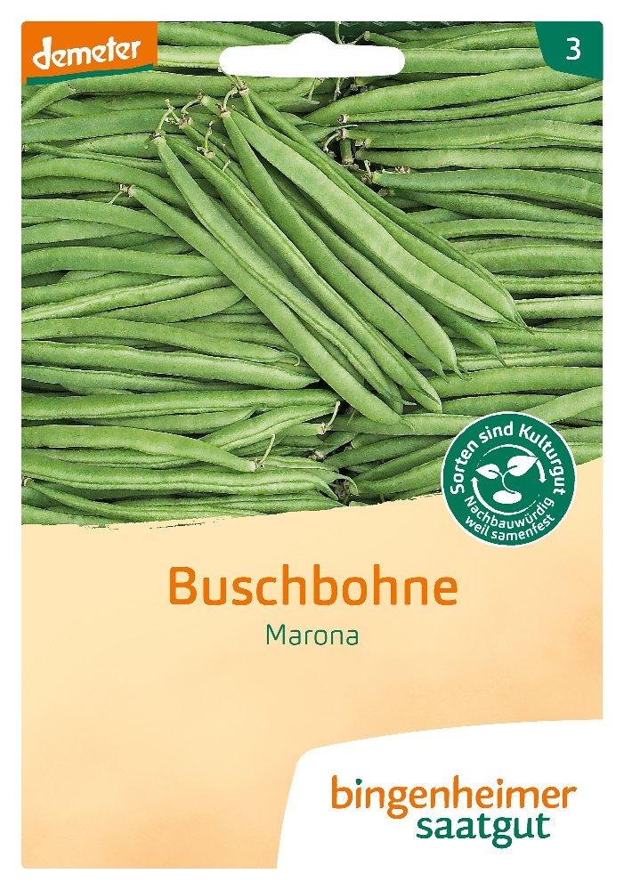 Saatgut Buschbohne Marona -B-