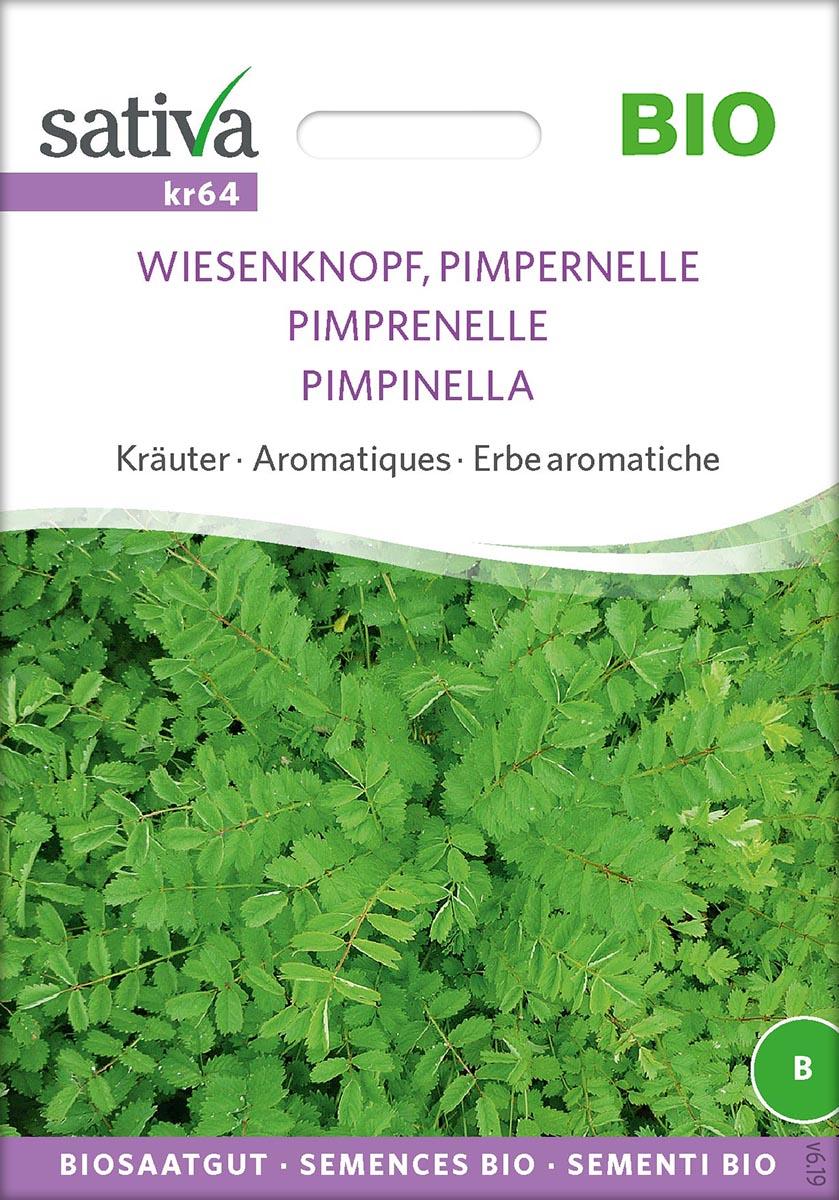 Saatgut Pimpernelle -S-