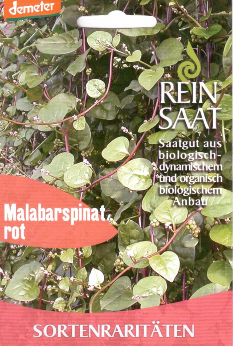 Saatgut Malaberspinat Rot -R-