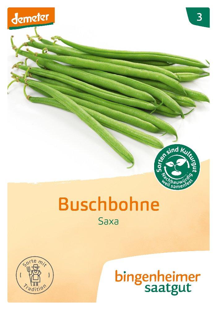 Saatgut Buschbohne Saxa -B-