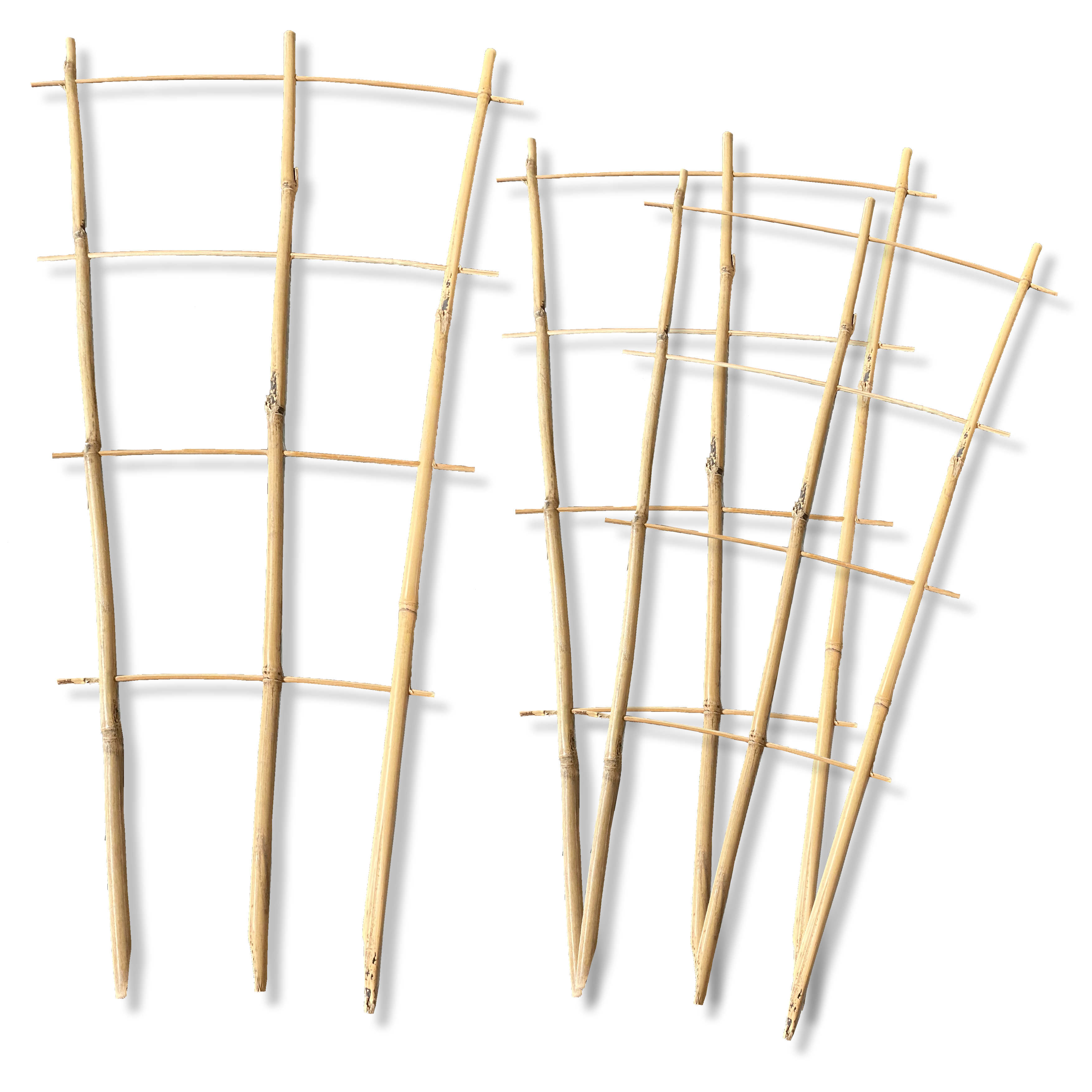 3 x Bambus Rankgitter 0,6m