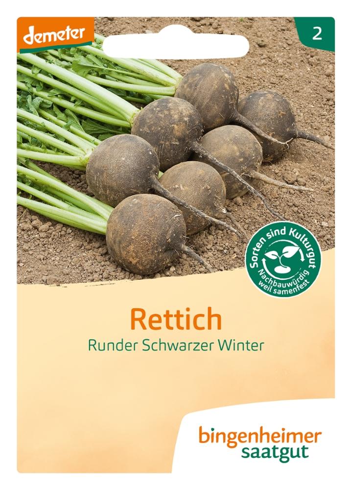 Saatgut Rettich Schwarzer Winter -B-