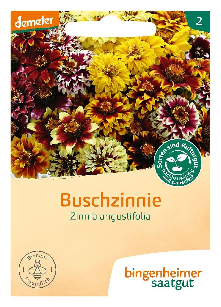 Saatgut Buschzinnie -B-